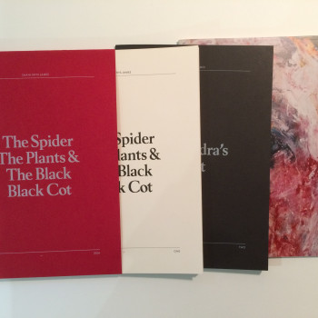 Shani Rhys James – 'The Spider, The Plants & The Black, Black Cot'
