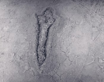Ana Mendieta, Gunpowder Silueta (Fundamento Palo Monte), 1980. Courtesy Galerie Lelong & Co. and Alison Jacques Gallery, London. © The Estate of Ana Mendieta Collection, LLC