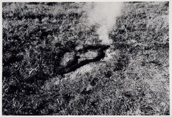 Ana Mendieta, Untitled, Silueta Series, 1978 © The Estate of Ana Mendieta Collection, LLC
