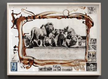 Peter Beard: Lion Pride