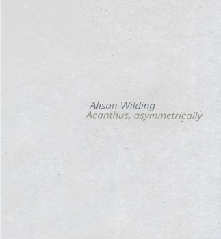 Alison Wilding: Acanthus Asymmetrically