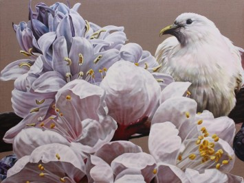 <span class=&#34;artist&#34;><strong>Anne Middleton</strong></span>, <span class=&#34;title&#34;><em>The gentle messenger: Pied Imperial Pigeon</em>, 2015</span>