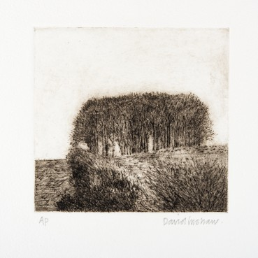 David Inshaw  Clump, 2010  Etching on perspex  14 x 13.5 cm  AP  Signed