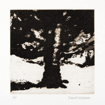 David Inshaw  The Tree, 2010  Copper plate etching  15 x 15 cm  AP  Signed