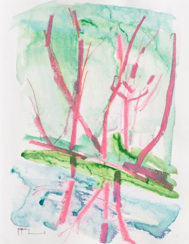 Ffiona Lewis  Pond Lilly, 2019  Pastel and wash on paper  24.5 x 19 cm