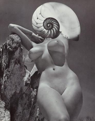Linder  Merry Maiden (iv), 2021  Photomontage  27 x 21 cm