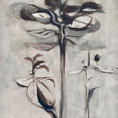 Alan Reynolds - Study of Plant E (III), 1952