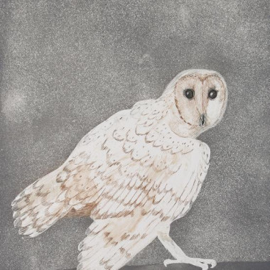 Elisabeth Frink - Barn Owl, from Six Owls [W 117], 1977