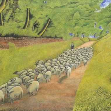 James Lloyd - Herding Sheep