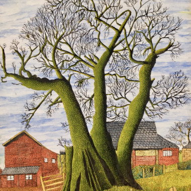 James Lloyd - Tree in a Farm, c 1960s