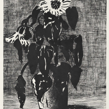 David Hockney - Sunflowers II, 1995