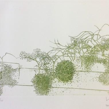 Victor Pasmore - Gardens of Hammersmith (Metamorphosis Linear Motifs A)
