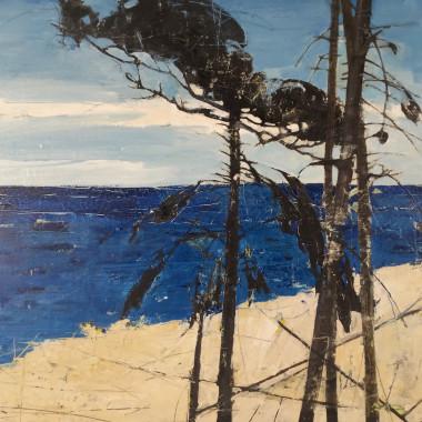 Ffiona Lewis - Atlantic Pine II, 2015
