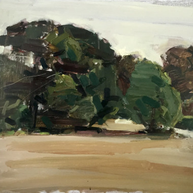 Stephen Palmer - The Wood (Plage-en-Re), 2019