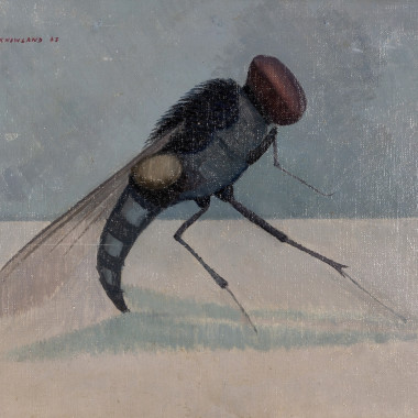 Dennis Knowland - Insect - The Fly, 1963
