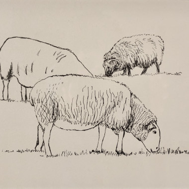 Henry Moore - Three Sheep Grazing, 1974