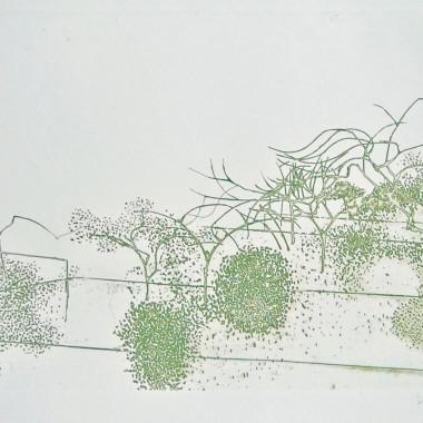 Victor Pasmore - Metamorphosis (Linear Motif), A, 1976