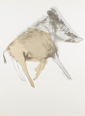 <span class=%22title%22>Wild Boar, from Images<span class=%22title_comma%22>, </span></span><span class=%22year%22>1967</span>