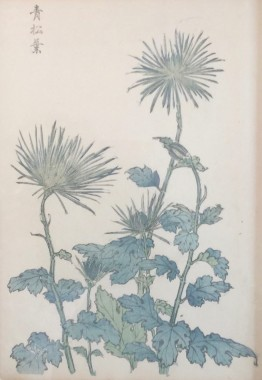 <span class=%22title%22>One Hundred Years of Chrysanthemums III<span class=%22title_comma%22>, </span></span><span class=%22year%22>1893</span>