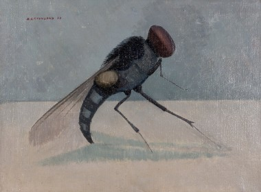<span class=%22title%22>Insect - The Fly<span class=%22title_comma%22>, </span></span><span class=%22year%22>1963</span>