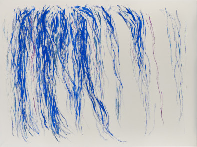 Untitled (Willows 1), 1979