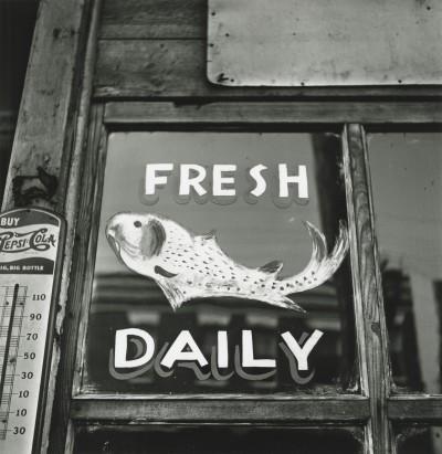 Penn/Warhol: Signs