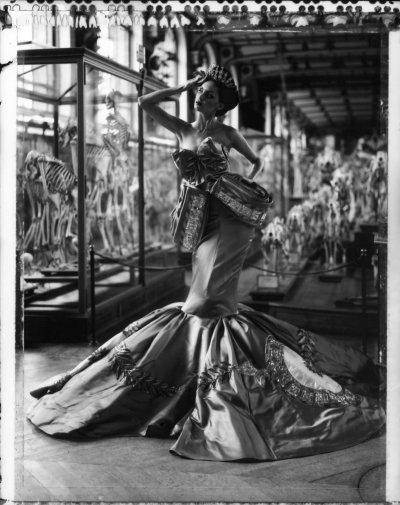 The Evolution of Fashion I, Dior Collection Winter 2004, Musée d'Histoire Naturelle, Galerie d'Anatomie, Paris