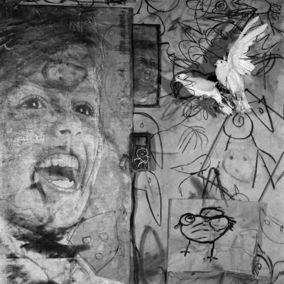 Roger Ballen, Asylum of the Birds