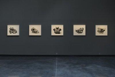 Irving Penn: Cranium Architecture