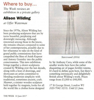 Alison Wilding - Review in The Week