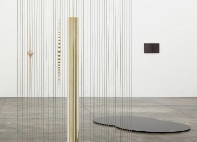 artur lescher, pensamento pantográfico, 2013