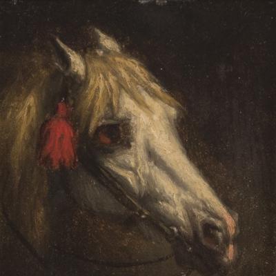 Tête de Cheval-Willem Jacobus Boogard