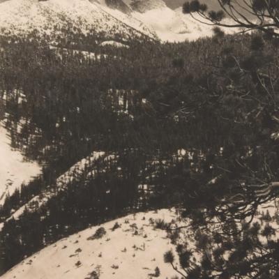 Mt. Galen Clark-Ansel Adams
