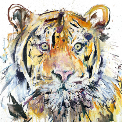 "'Tiger', Oil on linen, 40"" x 40"" 102cm x 102cm, by Dave White 2015"