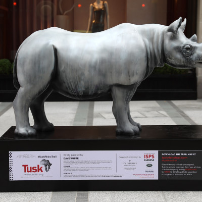 Tusk Rhino Trail Time Lapse, Generously supported by Forevermark