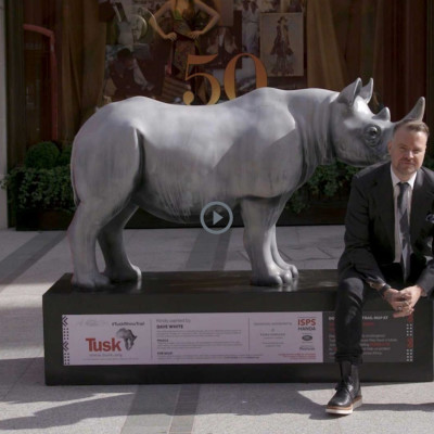 Tusk Rhino Trail Interview with Forevermark, Protecting Forever