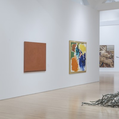 Lexicon: The Language of Gesture in 25 Years at Kemper Museum (May 16–August 25, 2019), Kemper Museum of Contemporary Art, Kansas City, Missouri. Photo by EG Schempf