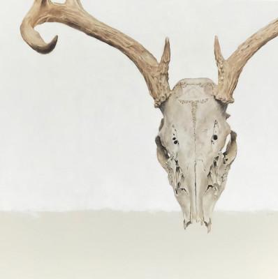 September Vhay, Summer Deer