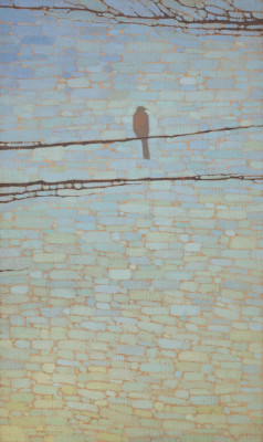 David Grossmann, Robin and Blue Sky Patterns
