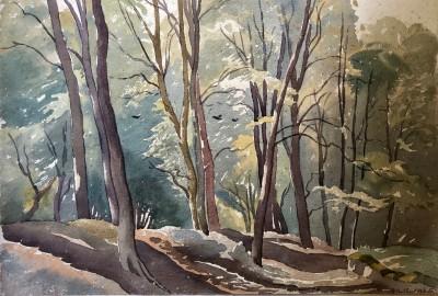 Ethelbert White (1891-1972)A Sussex Woodland, 1932