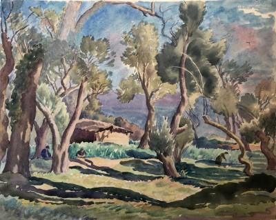 Ethelbert White (1891-1972)A Sunlit Olive Grove, c. 1935