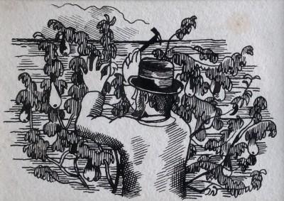 John Nash (1893-1977)The Pear Tree, 1930
