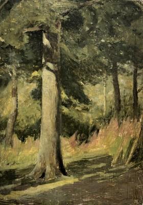 William Cubitt Cooke (1866-1951)Willow-herb, Sunshine in an Oak Wood, Hampshire, c. 1910