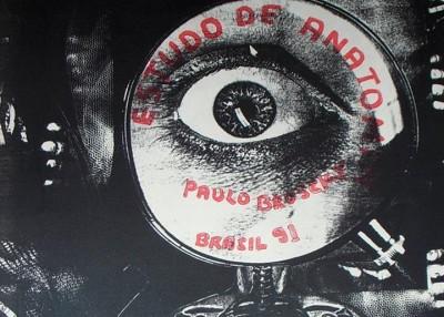 PaLarva - poesia visual e sonora de paulo bruscky