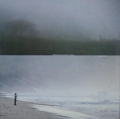 disco é cultura: o disco de vinil na arte contemporânea brasileira