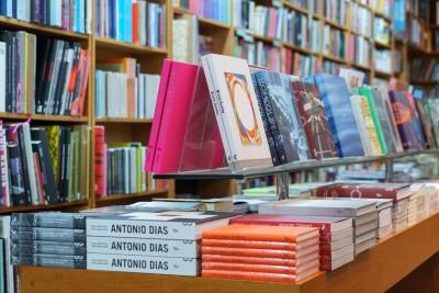 nara roesler livros