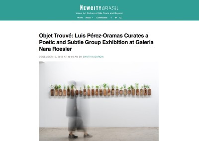 objet trouvé: luis pérez-oramas curates a poetic and subtle group exhibition at galeria nara roesler