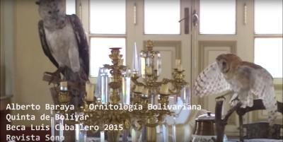 alberto baraya: ornitología bolivariana | revista sono
