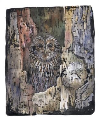Emma Faull, Tawny Owl