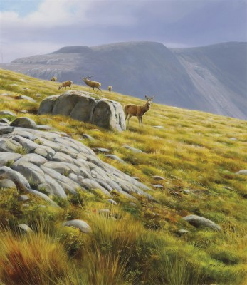 Rodger McPhail , Deer on the hill